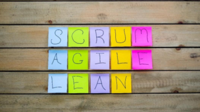 Comparing Agile Frameworks - PMWorld 360