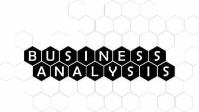 Business Analysis - PMWorld 360