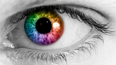Do you factor color recognition into your project reports and presentations? | Color Blindness | PMWorld 360 Magazine