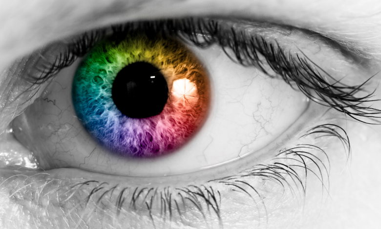 Photo of Do you factor color recognition into your project reports and presentations?