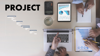 How PMOs can streamline project and program processes | PMWorld 360 Magazine