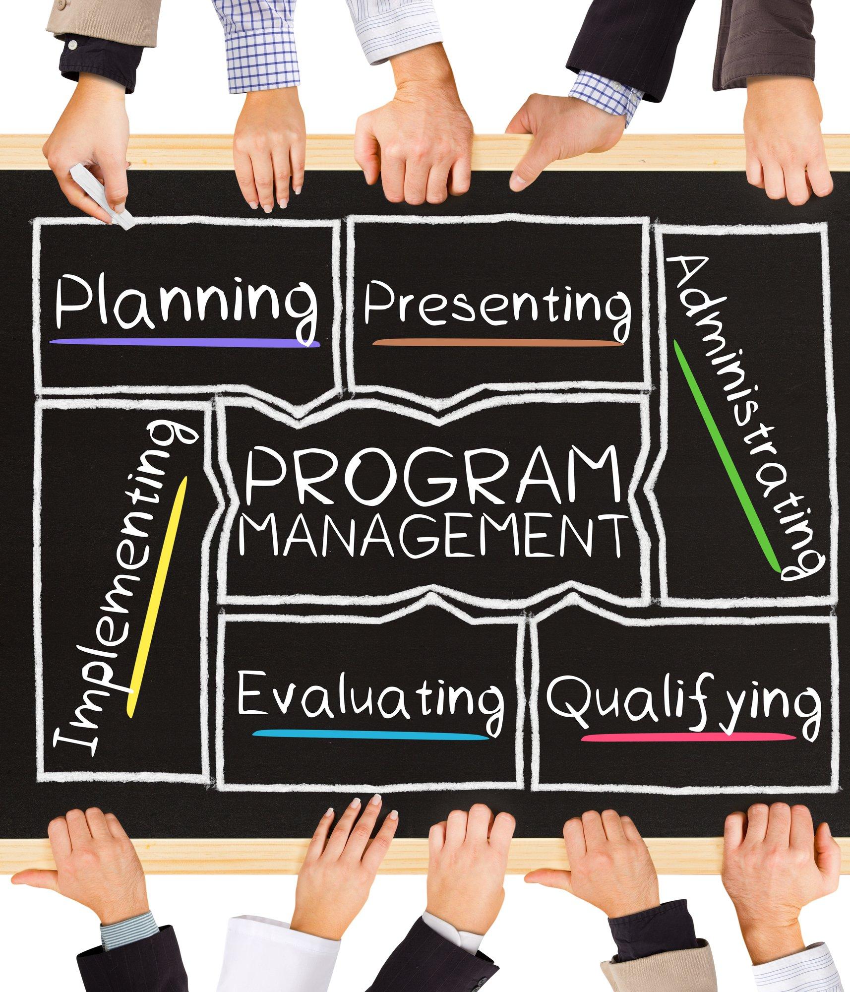 A starters guide to program management | PMWorld 360 Magazine