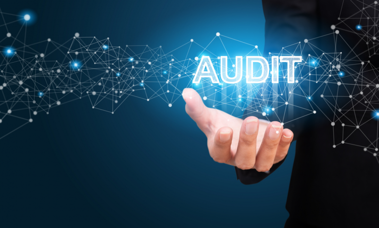 Photo of Audits as a project management governance tool