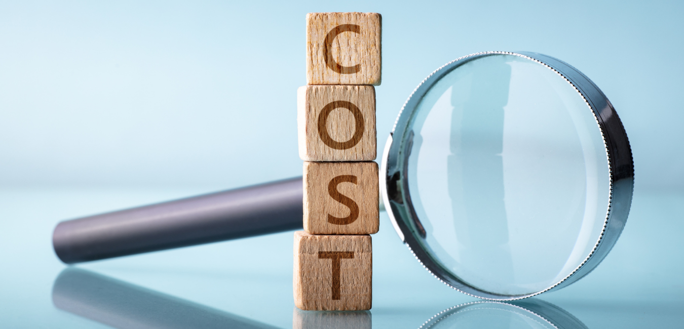 Cost Performance Index Calculator